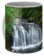 Rolley Lake Falls Dry Brushed Coffee Mug