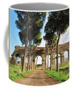 Roman Aqueducts Coffee Mug