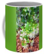 Romantic Skies Jasmine In Bloom Coffee Mug
