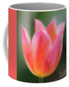Romantic Tulip Coffee Mug