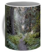 Roosevelt Grove Coffee Mug