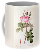 Rosa Bifera Officinalis Coffee Mug by Pierre Joseph Redoute