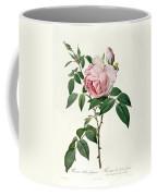 Rosa Chinensis And Rosa Gigantea Coffee Mug