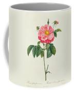 Rosa Gallica Flore Marmoreo Coffee Mug