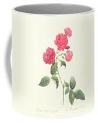 Rosa Indica Caryophyllea Coffee Mug
