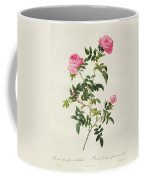 Rosa Sepium Flore Submultiplici Coffee Mug by Pierre Joseph Redoute