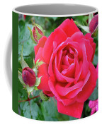 Rose And Buds - Double Knock Out Rose Coffee Mug