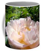 Rose Art Prints Canvas Sunlit Pink Rose Garden Baslee Troutman Coffee Mug