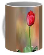 Red Tulip At Sunset By Kaye Menner Coffee Mug