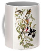 Rose Breasted Grosbeak Coffee Mug by John James Audubon
