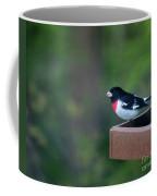 Rose-breasted Grosbeak On Feeder Coffee Mug