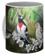 Rose Breasted Grosbeaks Coffee Mug