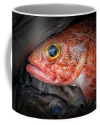 Rose Fish Coffee Mug