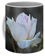 Rose Flower Series 14 Coffee Mug