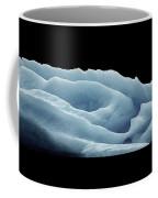 Rose Iceberg Coffee Mug