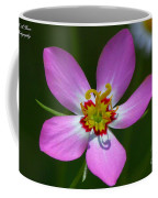 Rose Of Plymouth Coffee Mug