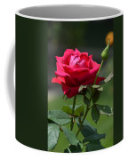 Rose Of Romance Coffee Mug