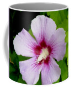 Rose Of Sharon Close Up Coffee Mug