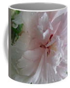 Rose Of Sharon In The Rain Coffee Mug