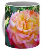 Rose Pink Yellow Rose Flower 2 Rose Garden Giclee Prints Baslee Troutman Coffee Mug