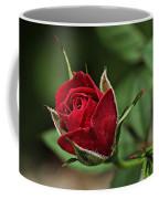 Rose Portrait  Coffee Mug