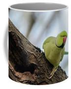 Rose-ringed Parakeet 04 Coffee Mug