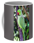 Rose-ringed Parakeet Coffee Mug
