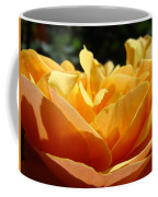 Rose Sunlit Orange Rose Garden 7 Rose Giclee Art Prints Baslee Troutman Coffee Mug