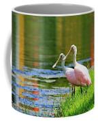 Roseate Spoonbills Coffee Mug