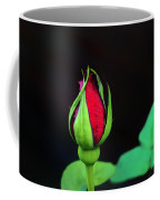 Rosebud Coffee Mug