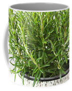 Rosemary Coffee Mug