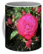 Roses 5 Coffee Mug