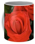 Roses-5814 Coffee Mug