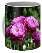 Roses Art Rose Garden Pink Purple Floral Prints Baslee Troutman Coffee Mug