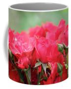 Roses Close Up Nature Spring Scene Coffee Mug