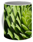 Rosette Coffee Mug