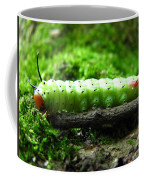Rosy Maple Moth Caterpillar Coffee Mug