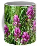Rosy Wildflowers Coffee Mug