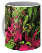 Rouge Cardinal Clematis 2 Coffee Mug