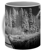 Round Lake State Park 4 Coffee Mug