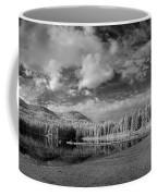 Round Lake State Park 6 Coffee Mug
