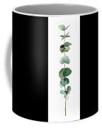 Round Leaf Eucalyptus Twig Coffee Mug