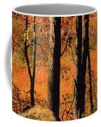 Round Valley State Park 3 Coffee Mug