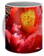 Row Of Flowers Coffee Mug