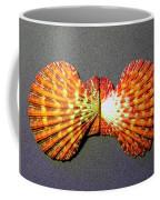 Royal Cloak Scallop Seashell  Coffee Mug
