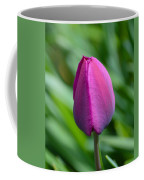 Royal Tulip Coffee Mug