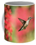 Ruby Throated Hummingbird 2016-6 Coffee Mug