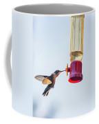 Ruby-throated Hummingbird 5 Coffee Mug