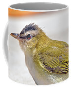 Ruffed Up Coffee Mug