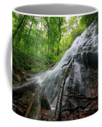 Rufus Morgan Falls Coffee Mug